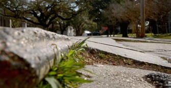 Subsidence is the primary reason behind New Orleans' famously deplorable road conditions, such as this nearly impassable stretch of S. Roman Street near Napoleon Avenue.