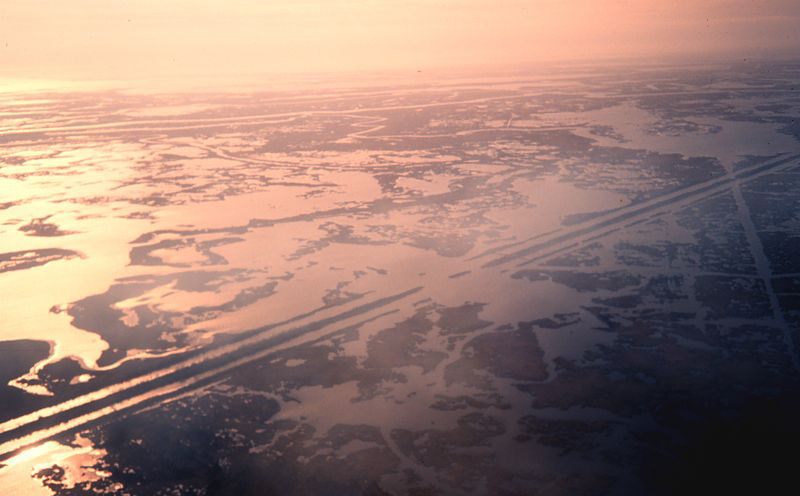 Oil service canals in the Barataria Basin show the ravages of an industry that has given much and taken even more from Louisiana.
