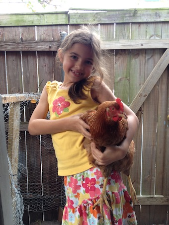 Rooster and child: Endangered species in the downriver wards?