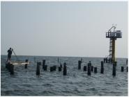 shell beach sentinel station-carousel