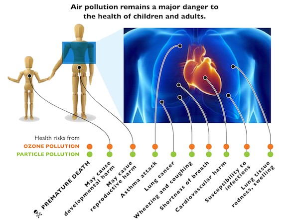 Health effects graphic