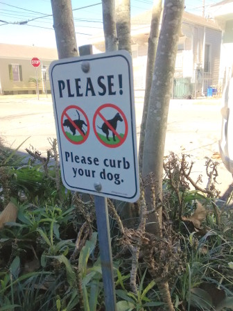 If the curbside plantings had any say in the matter, they might ask Bowser and her master to ignore the warning and fertilize freely.