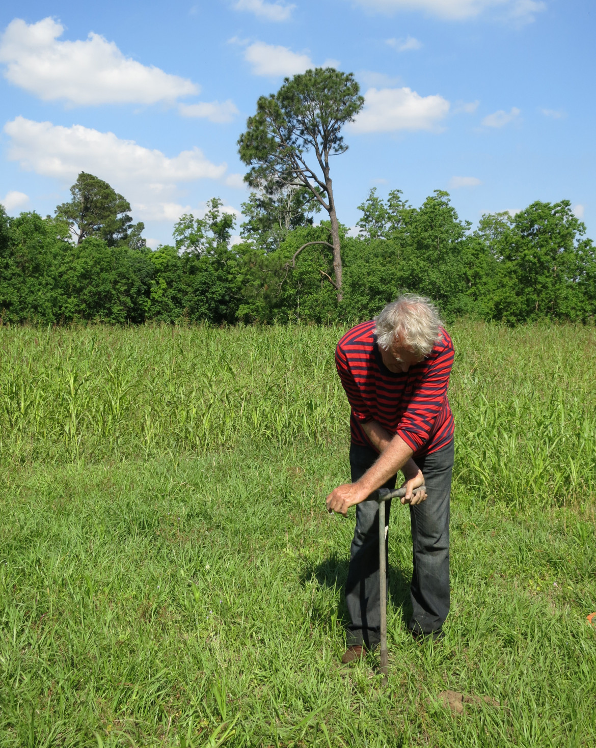 Roelof Stuurman uses a hand auger to drill a hole for an experimental groundwater monitoring gauge near Mirabeau Ave. Hydrologists say the city needs a system of such gauges before the city can address is serious subsidence issues.