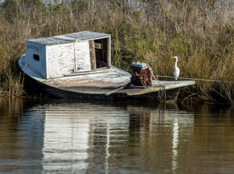 The people of Grand Bayou have found it harder and harder to make a living off the land and water, with saltwater intrusion taking its toll on both.